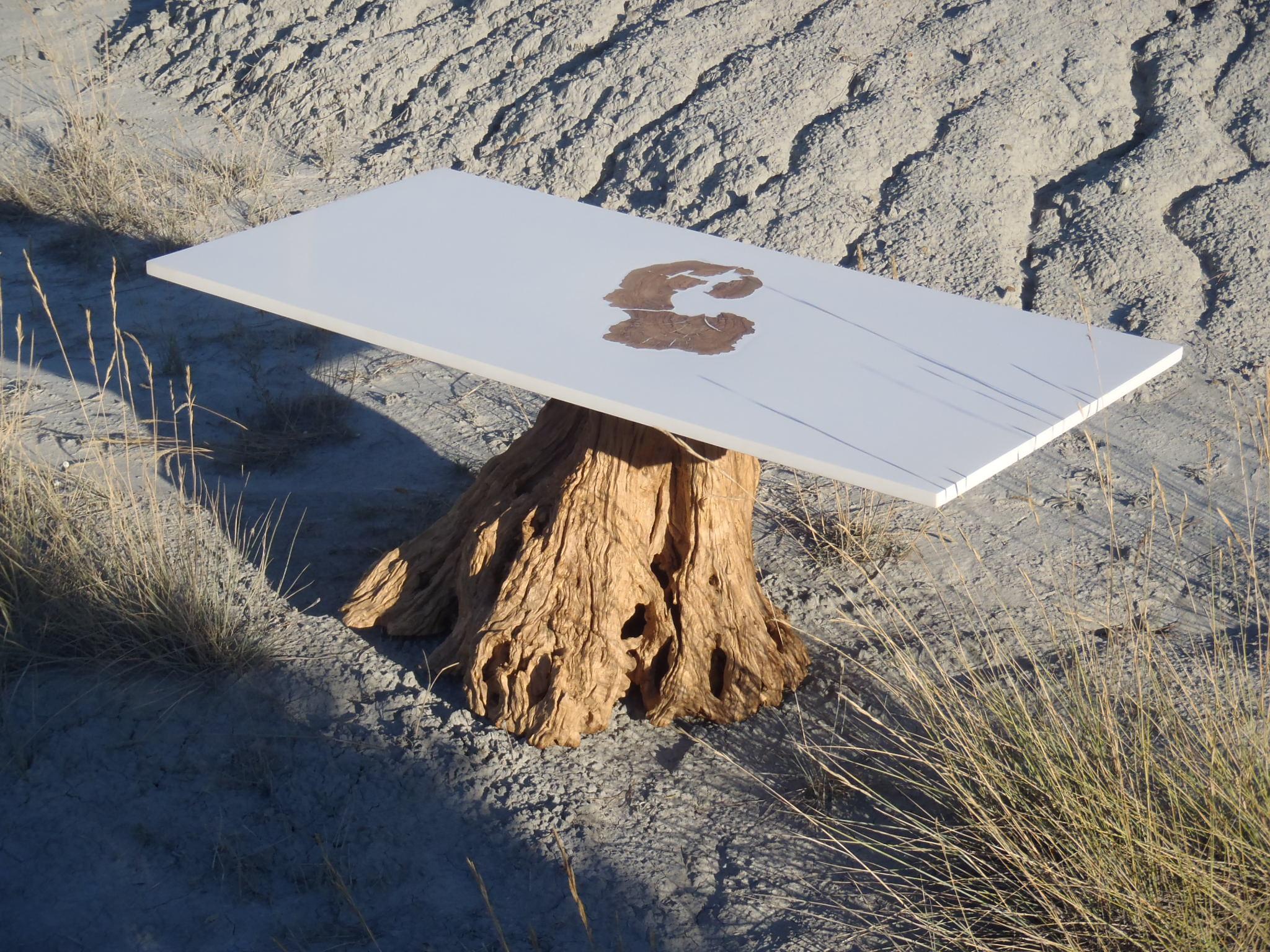 Table basse r sine bear foot boutique penone design - Table plateau tronc d arbre ...